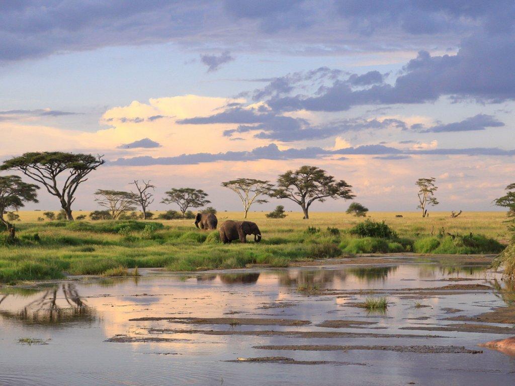 Екскурзии и почивки в Танзания